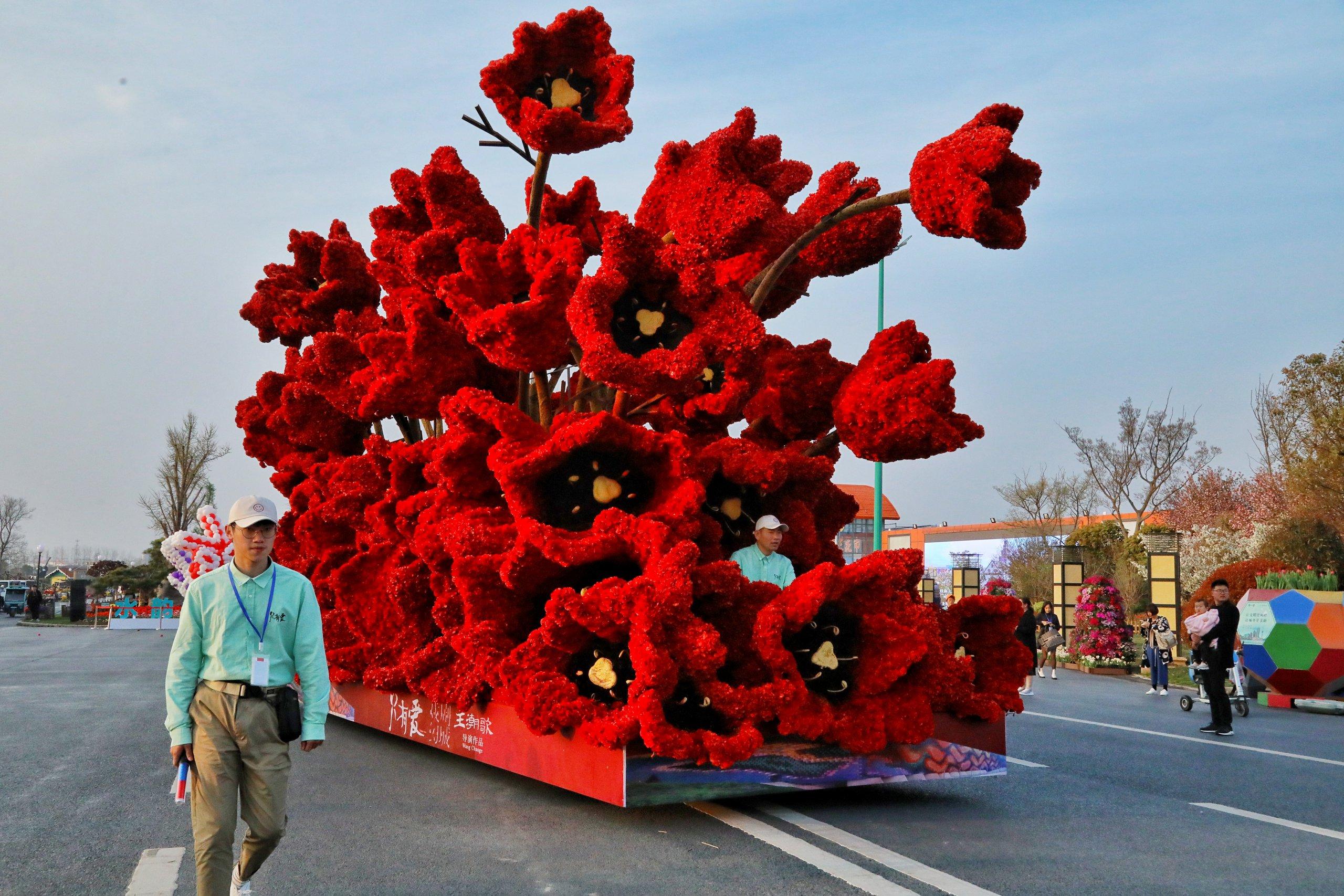Dafeng Holland Flower Park